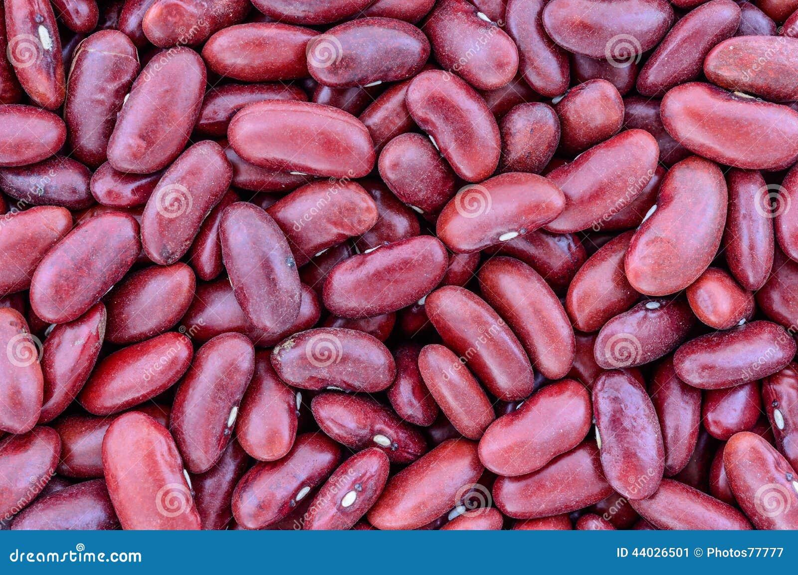 Textura de las habas de riñón rojas