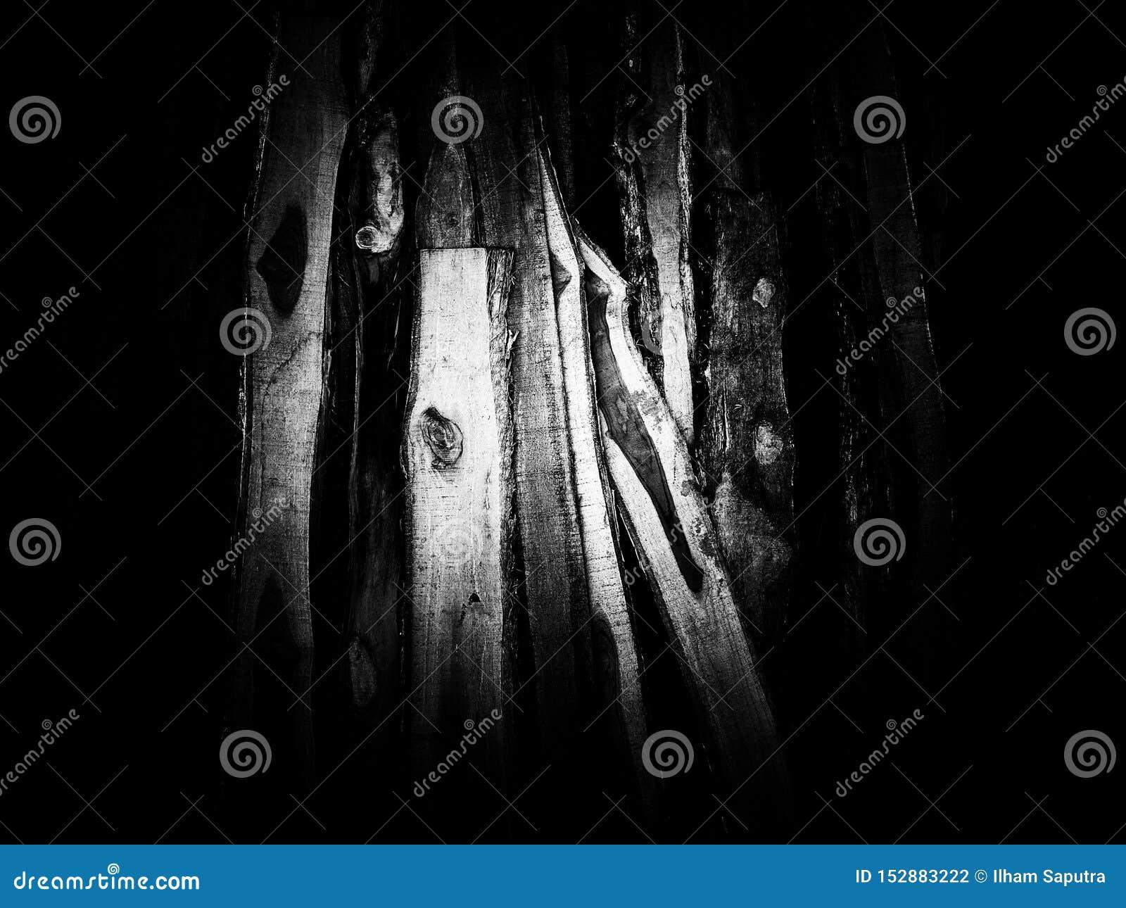 Textura de madeira da pilha em preto e branco