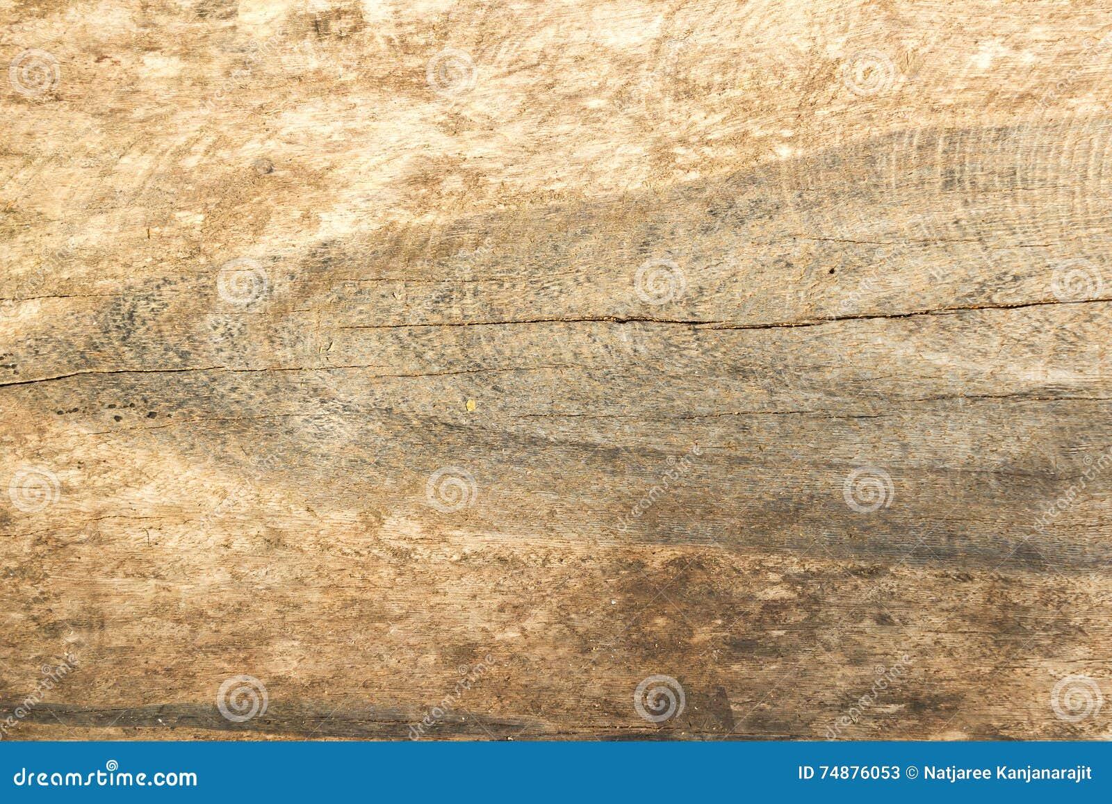 Textura de madeira do corte do close up