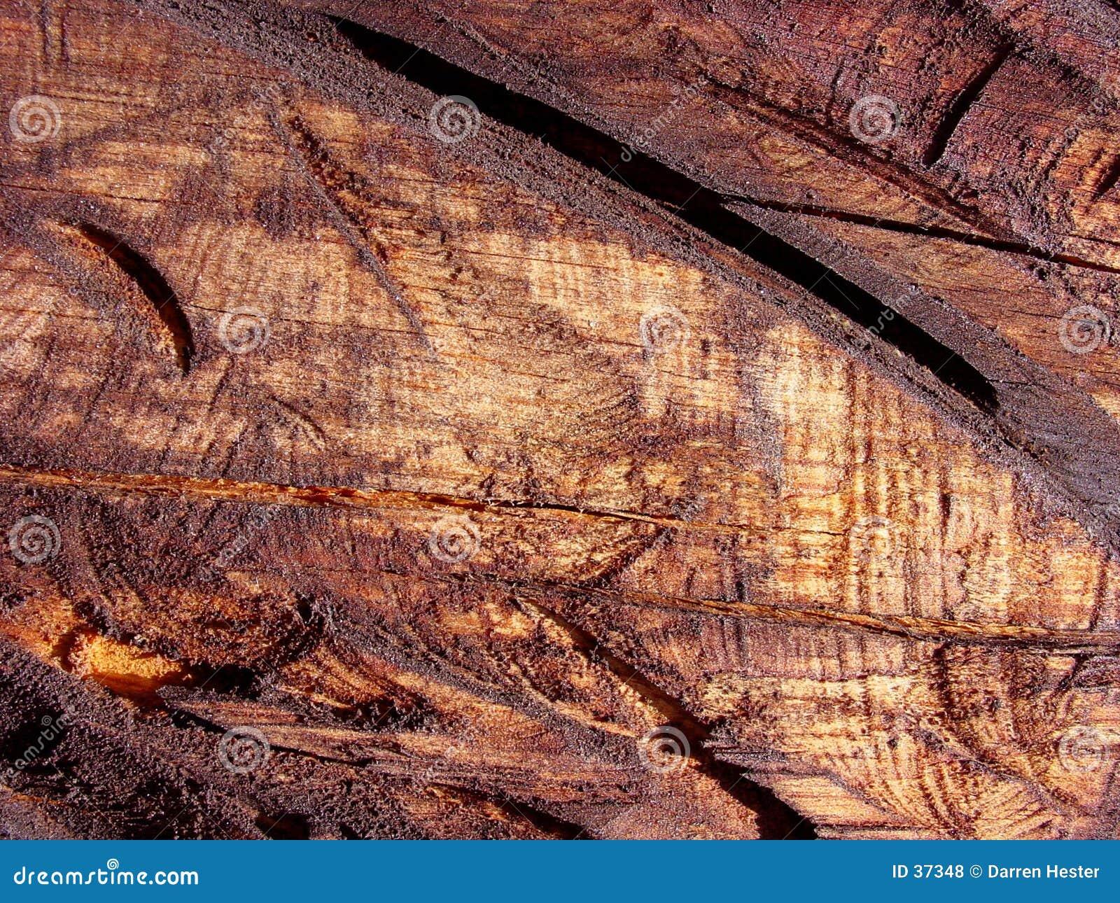 Download Textura de madera foto de archivo. Imagen de grunge, fondo - 37348