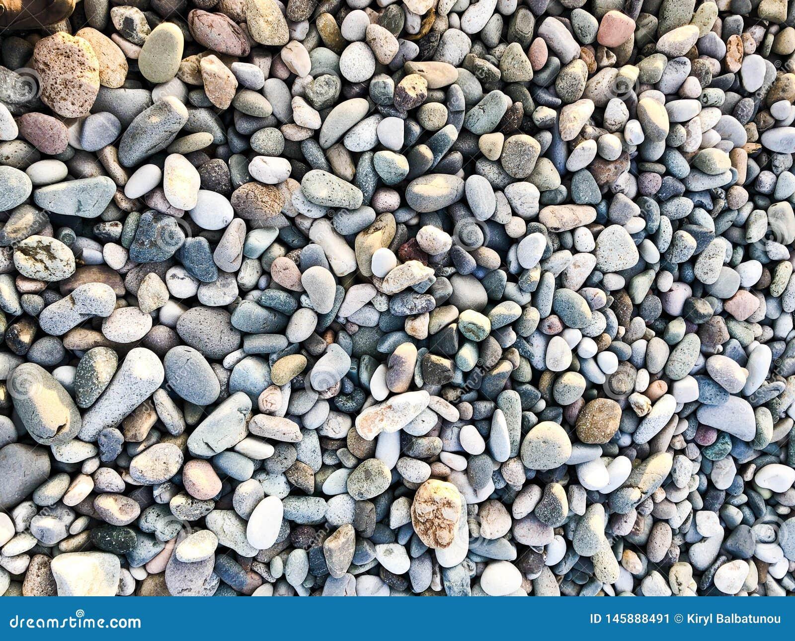 Textura de muchos ronda hermosa multicolora y piedras naturales lisas ovales, guijarros Los antecedentes