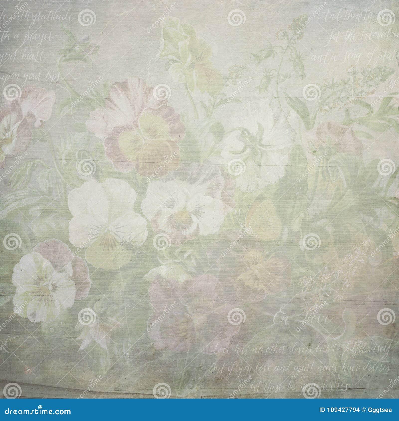 Textura de papel das flores botânicas gastos do vintage