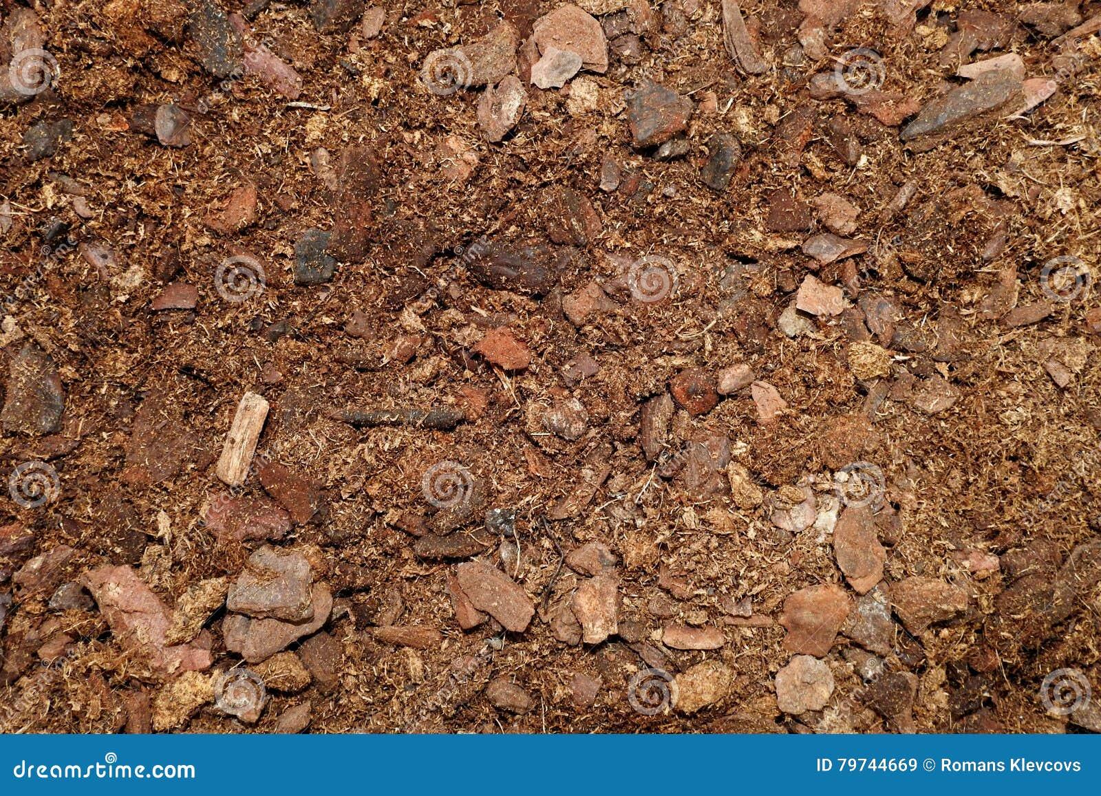 Textura de tierra seca de Brown