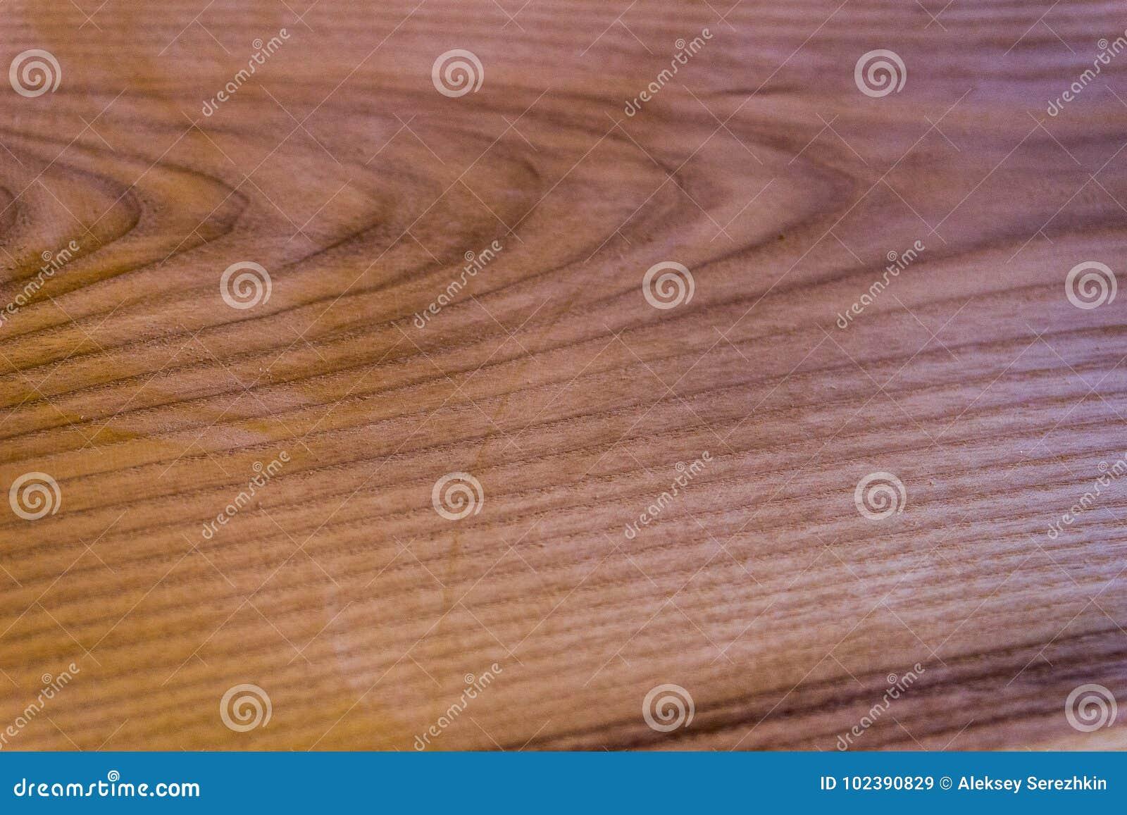 Textura de um carvalho, fundo