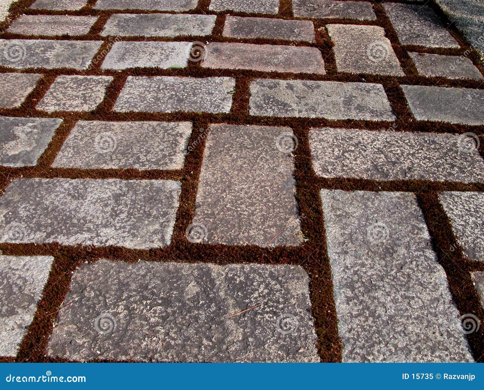 Textura del camino de la roca