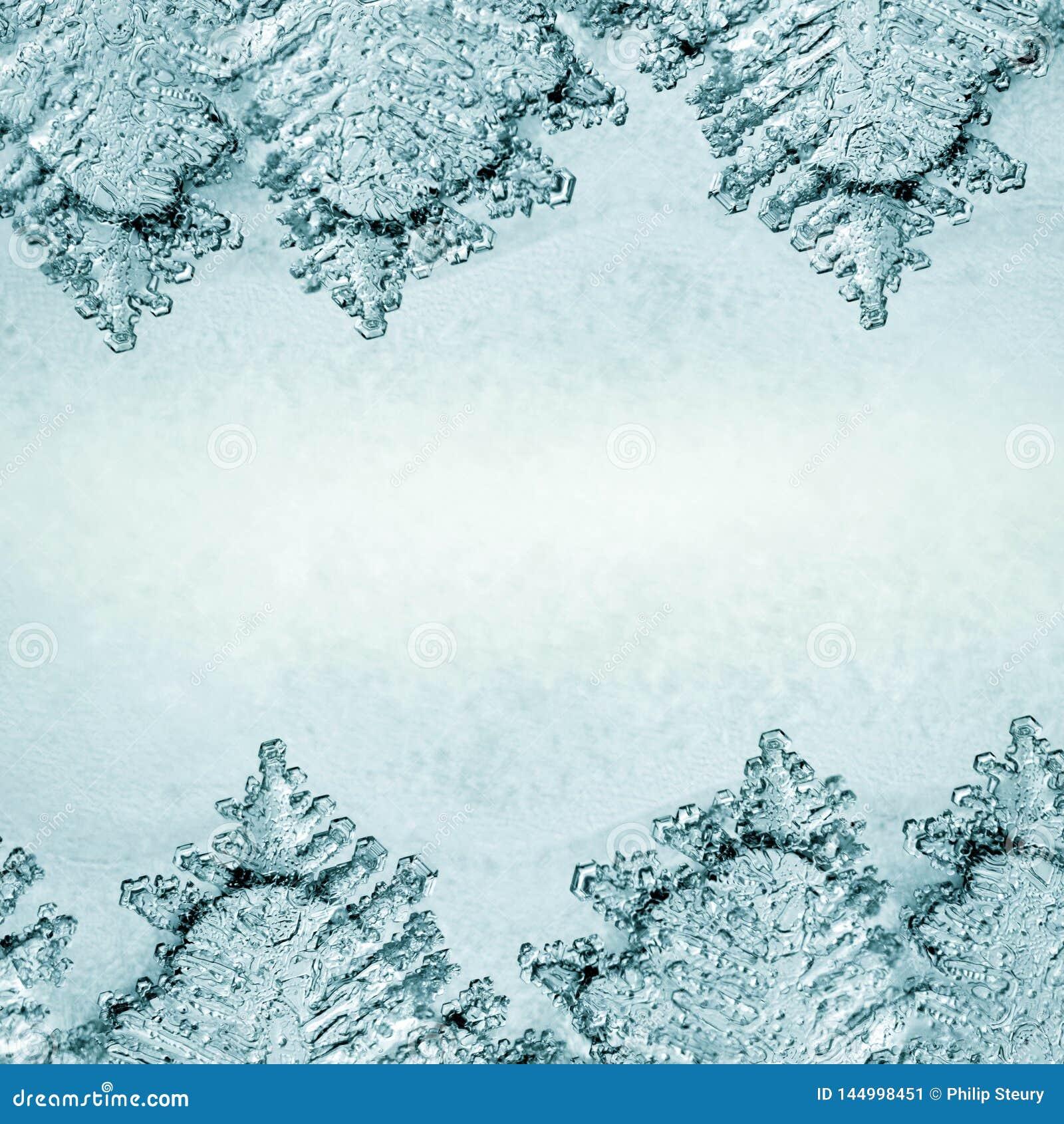 Textura del fondo del hielo