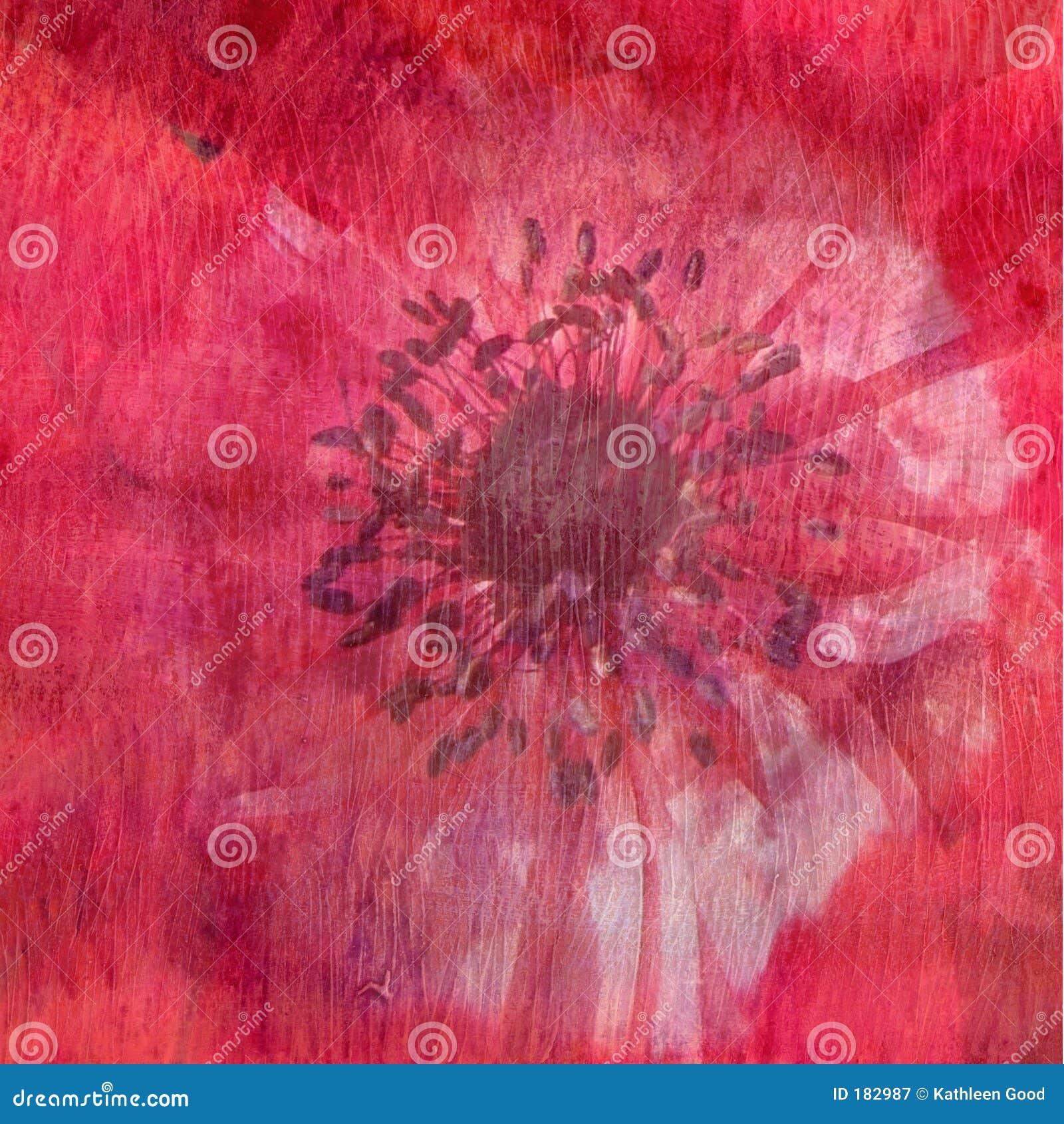 Textura floral - rojo