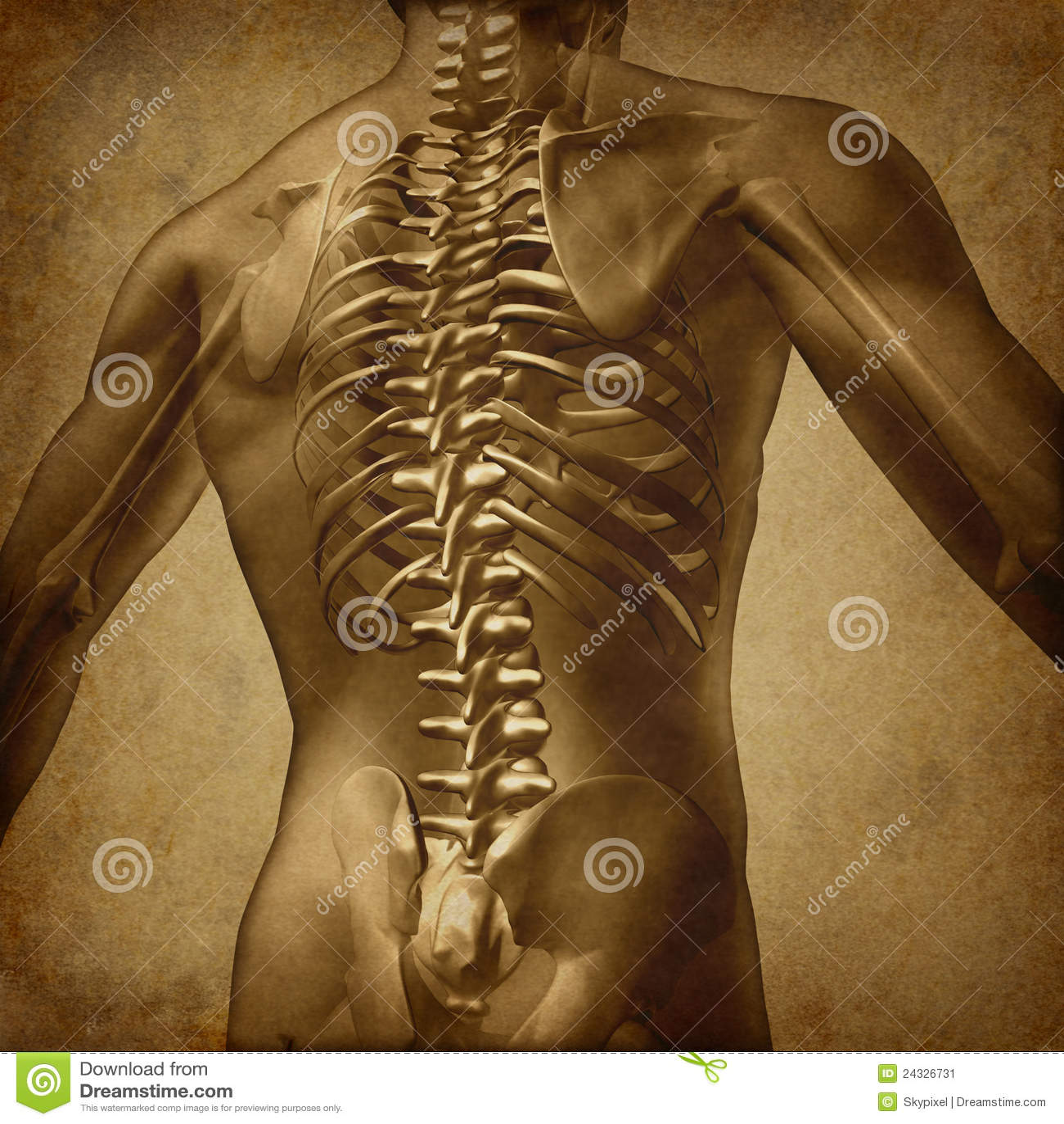 Textura posterior de Grunge del ser humano