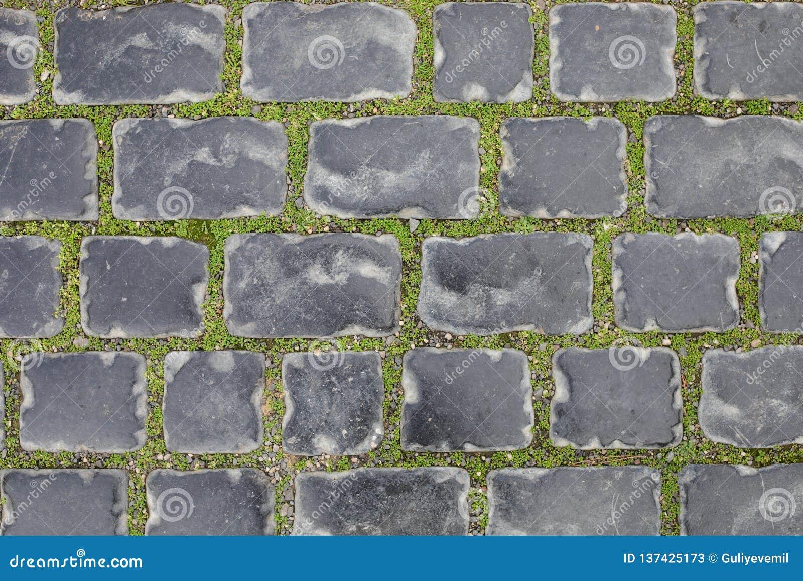 Textura sem emenda de uma trilha da pedra de pavimentação em uma grama verde baku azerbaijan no inverno Cidade velha