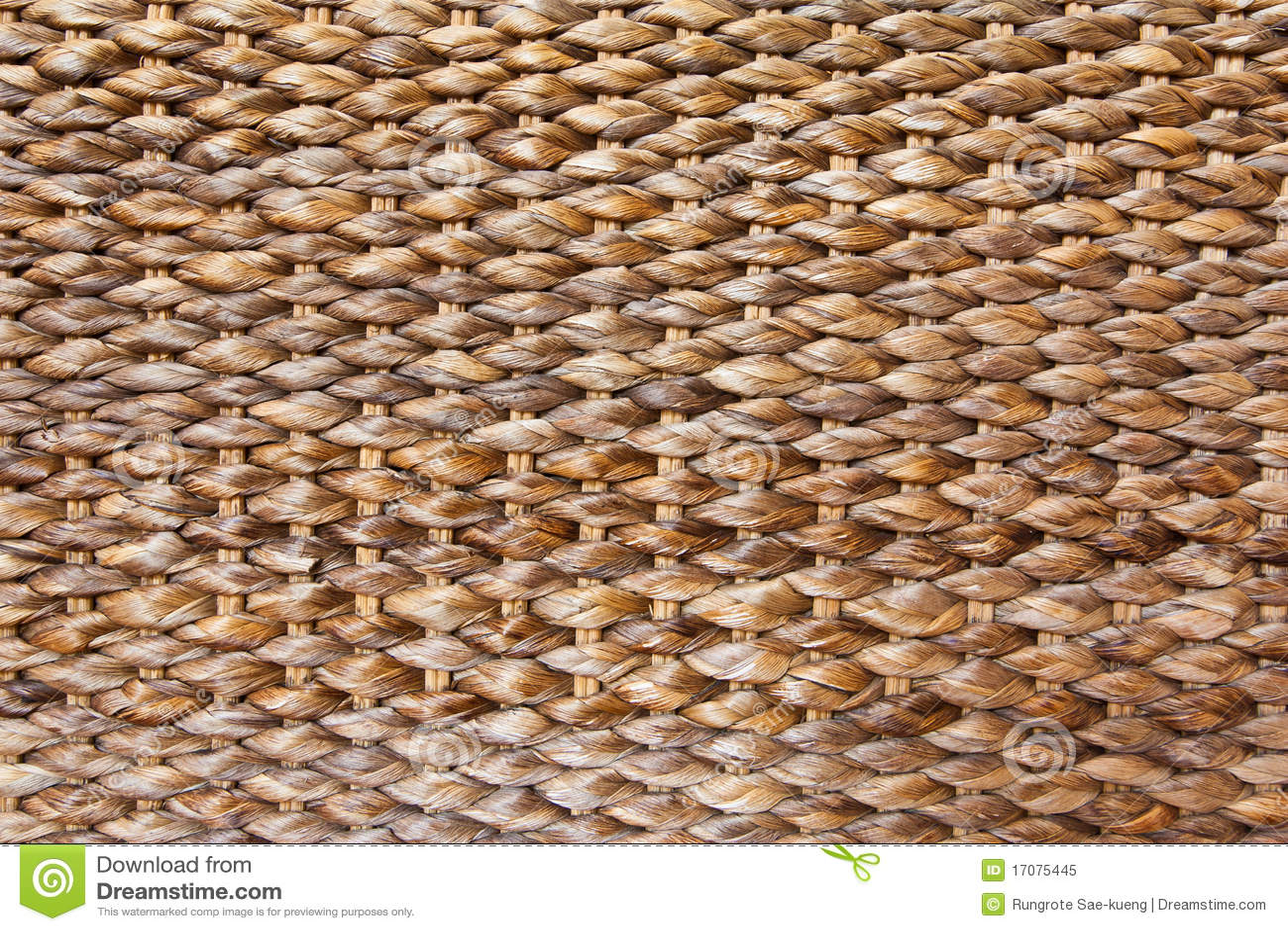 Textura transversal da decoração do hyacinth