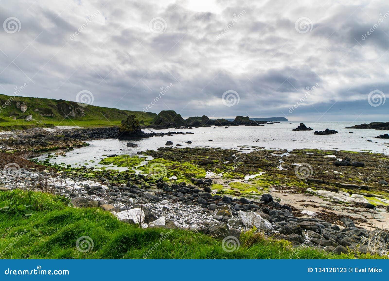 Texturas e paisagem de Irlanda do Norte