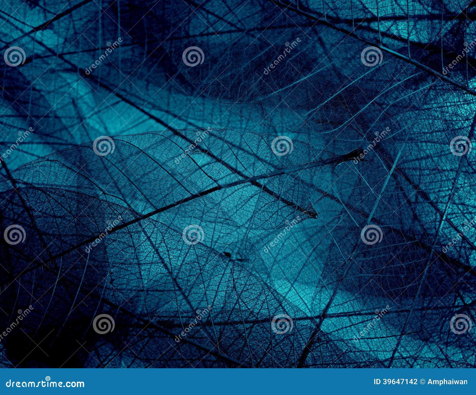 Texturas em cores frescas