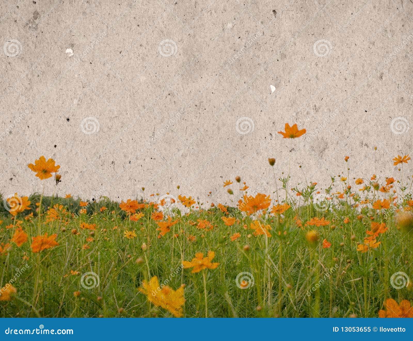 Texturas velhas do papel da flor