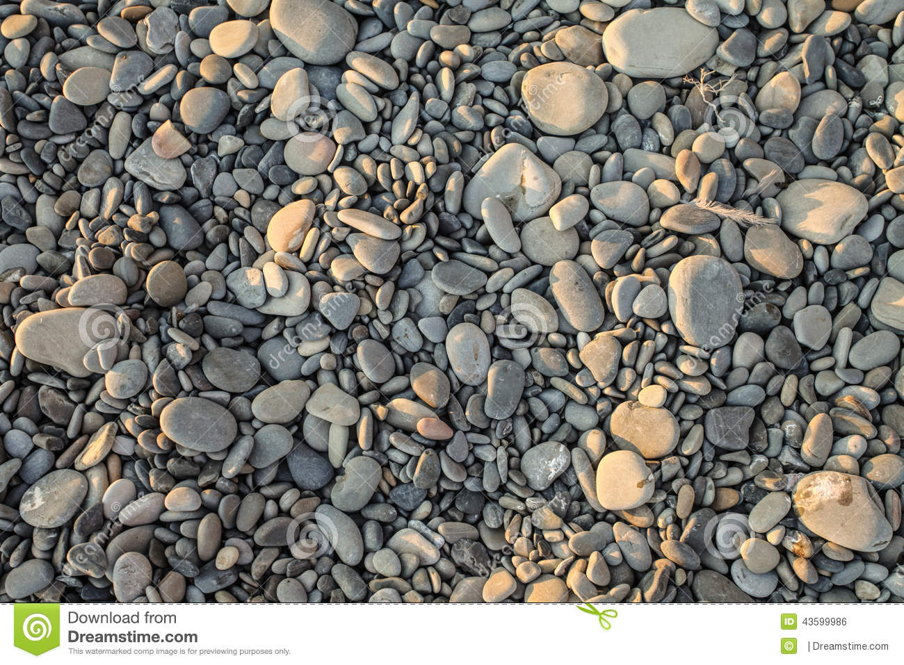 Texture, Background, Pebbles, Gray Stones On The Beach Stock Photo - Image 43599986-9135