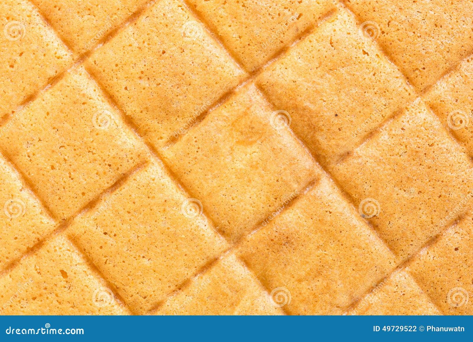 Chocolate Sponge Cake Texture