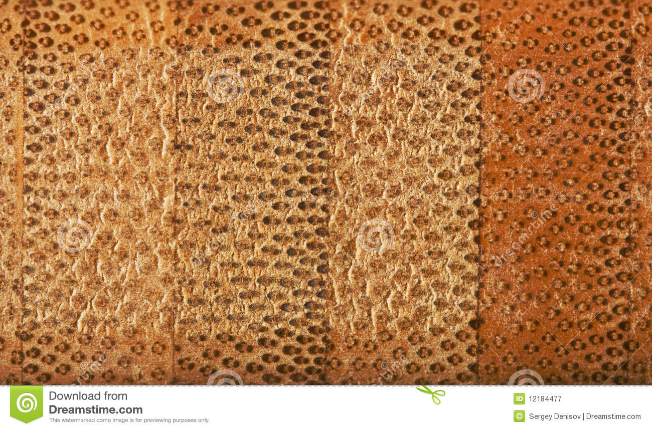 Texture Of The Cross Section Of Bamboo Fiber Board Royalty