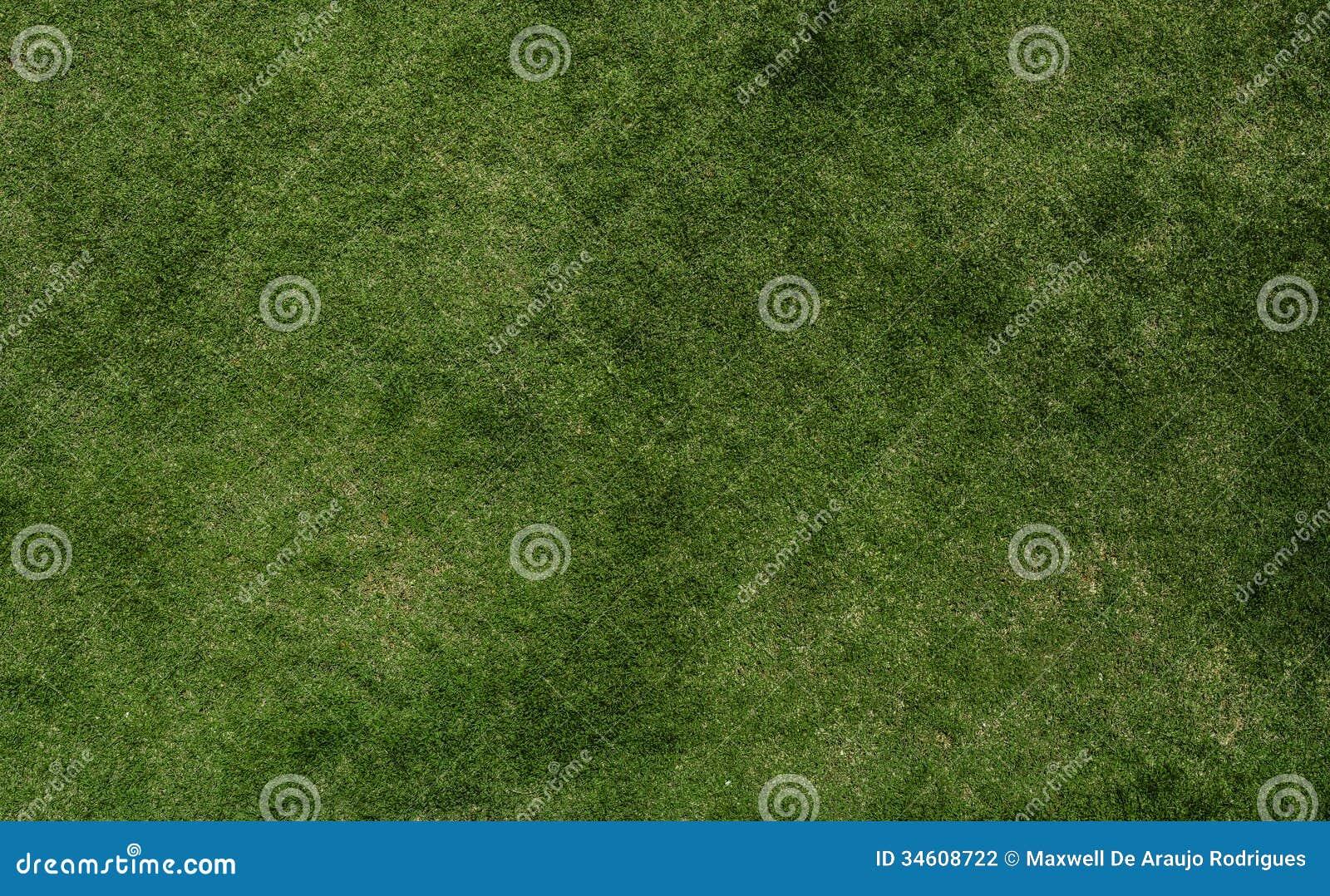Texture d herbe du football
