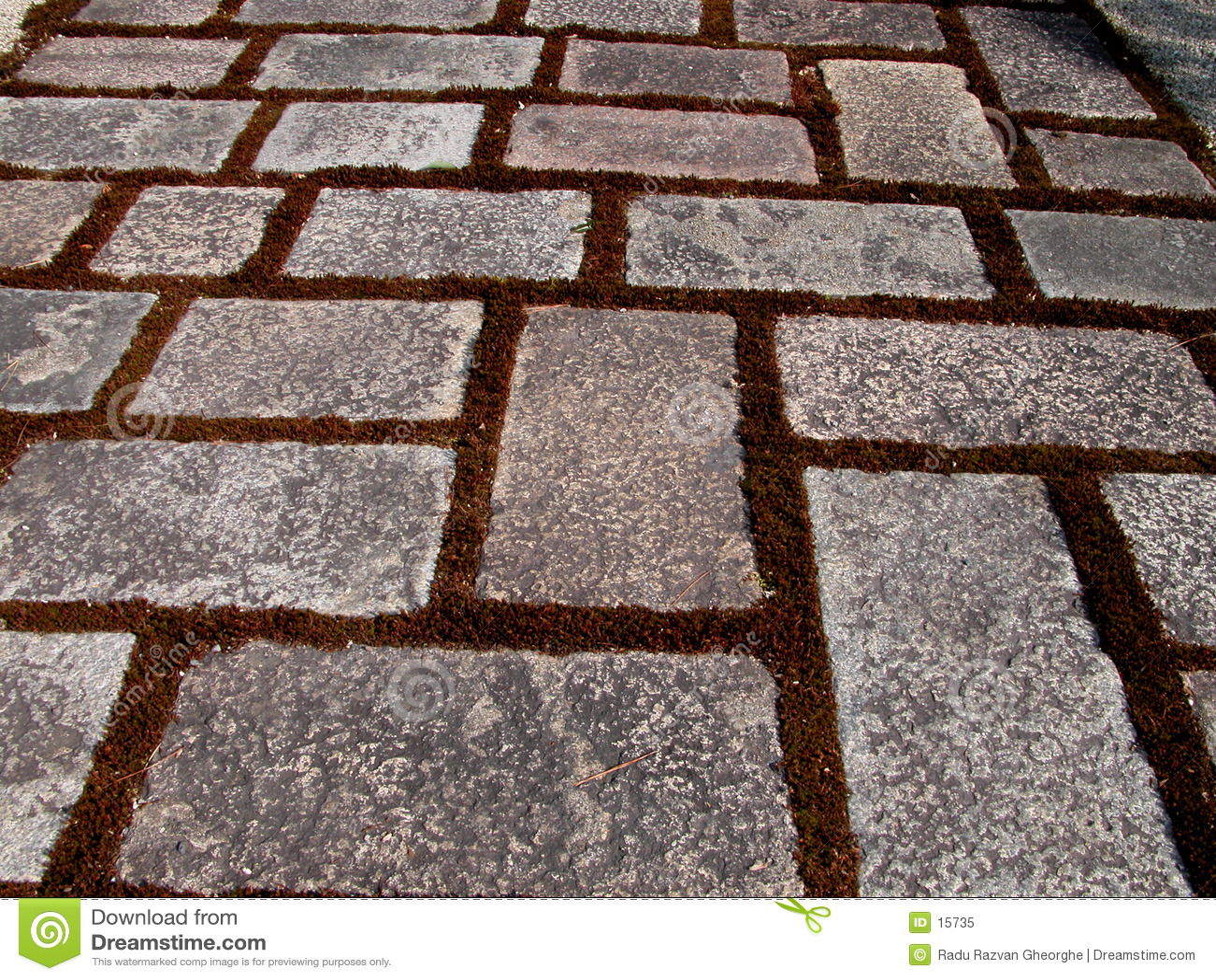 Texture de chemin de roche