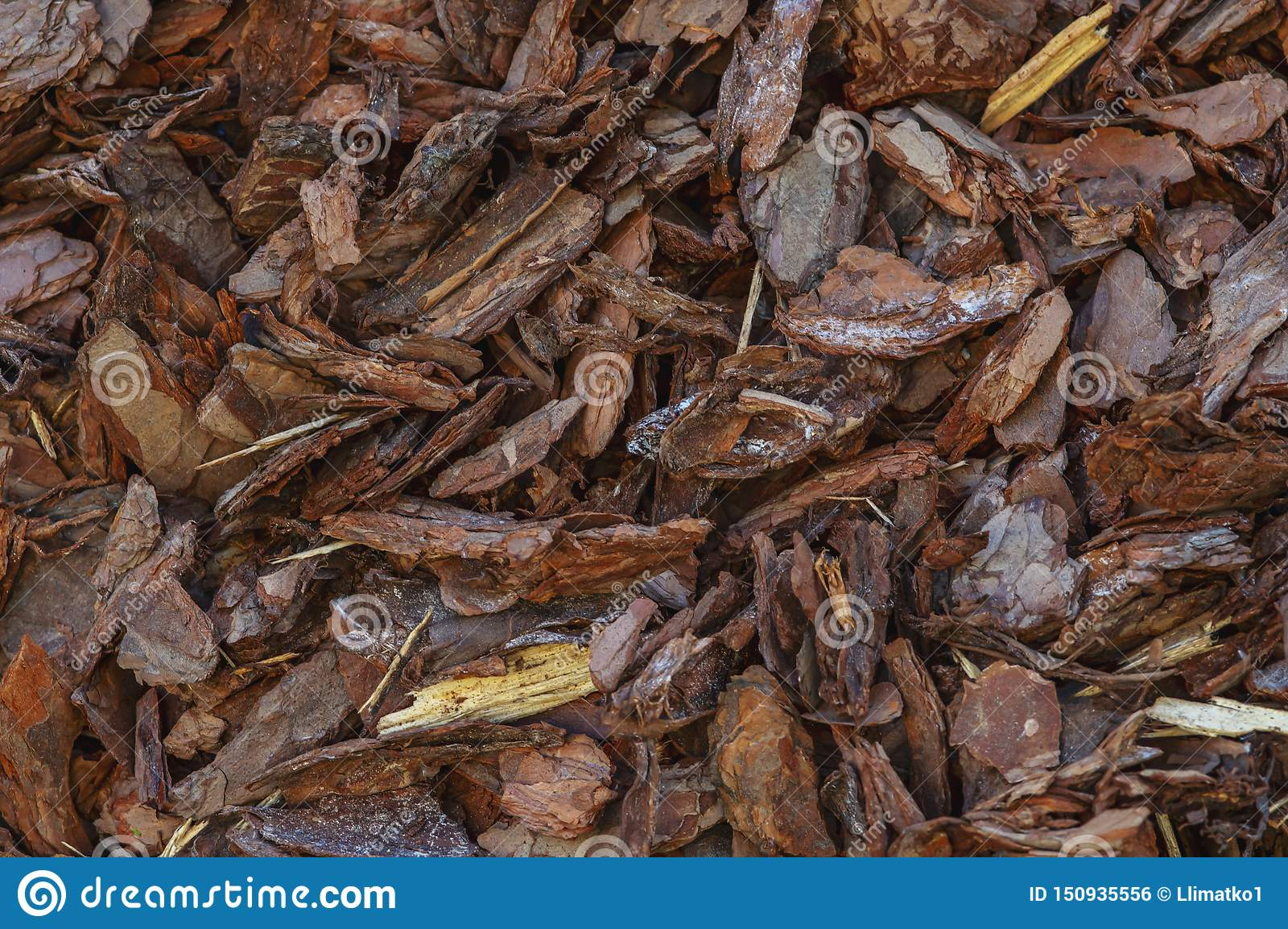 Texture de fond d écorce ou de ruban avec de petits morceaux de bois naturel