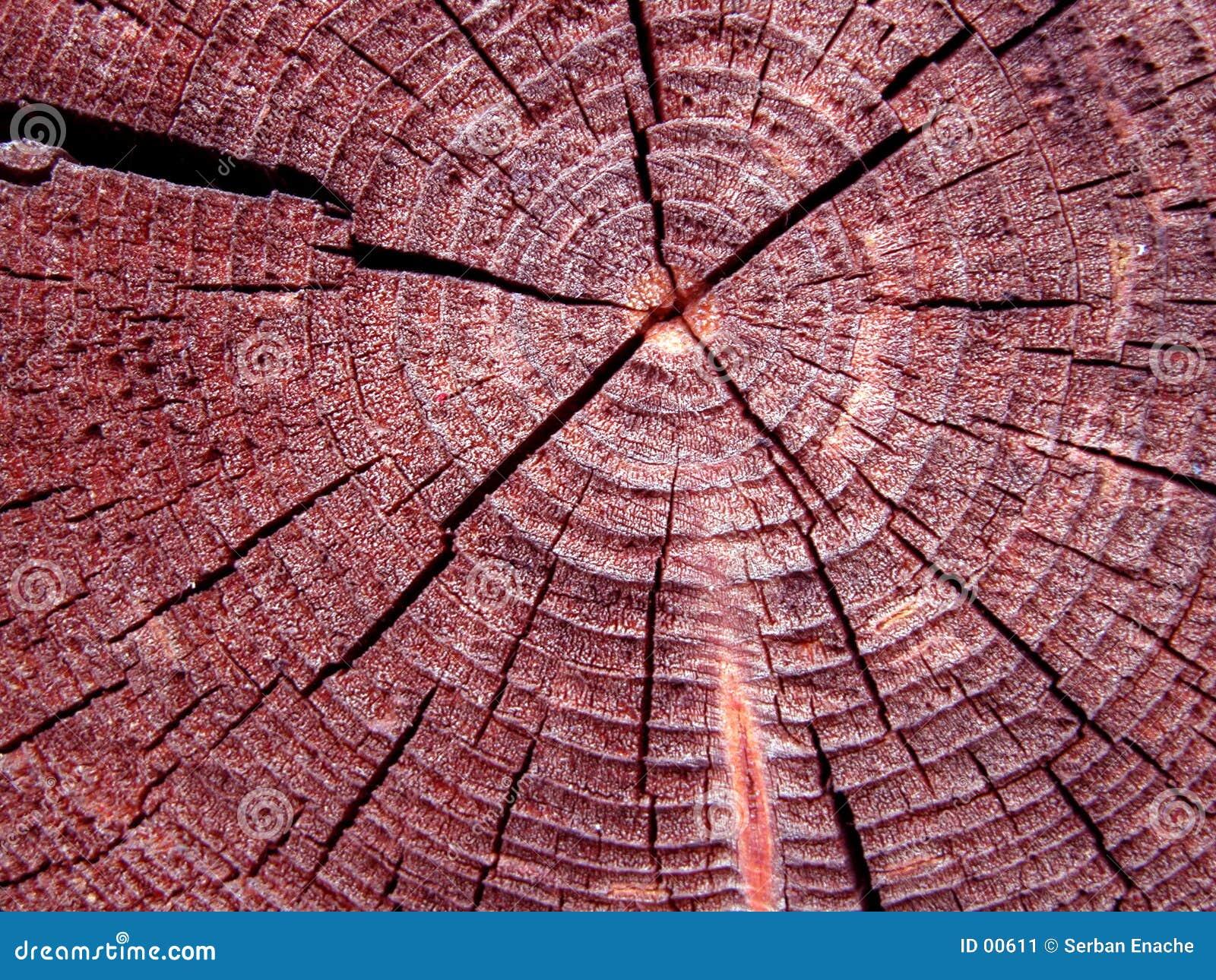 Texture de logarithme naturel