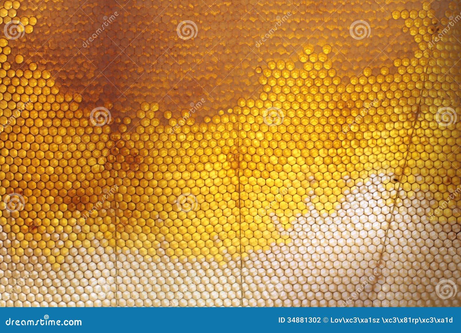 Texture de nid d abeilles