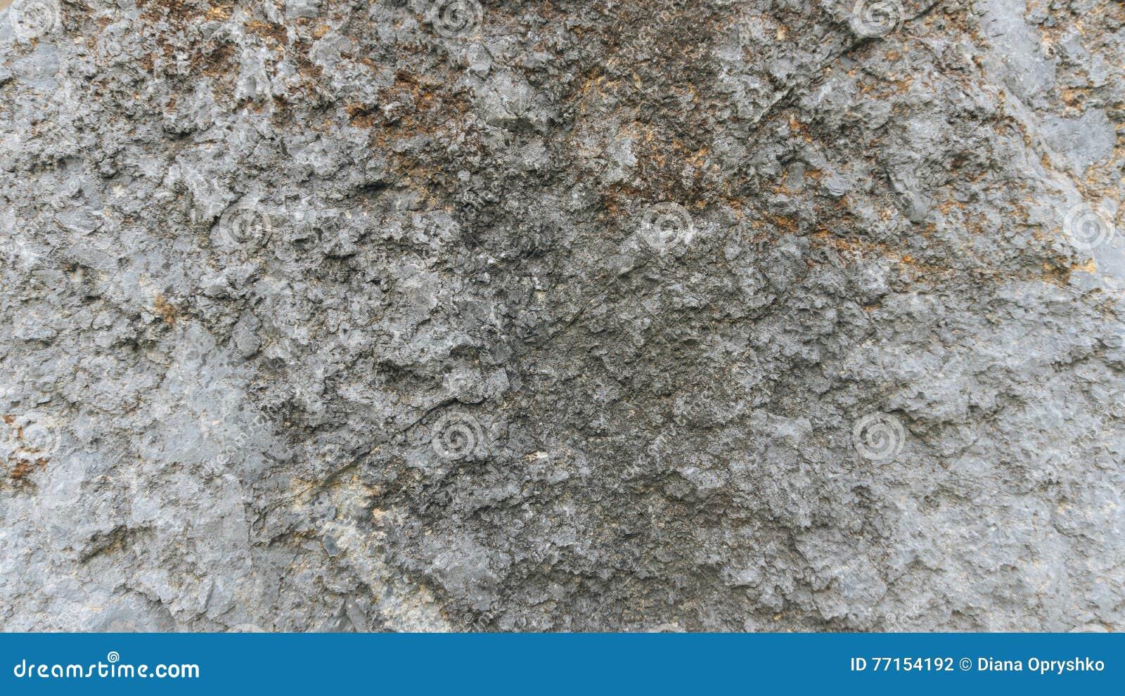Texture de pierre de chaux de Debnik