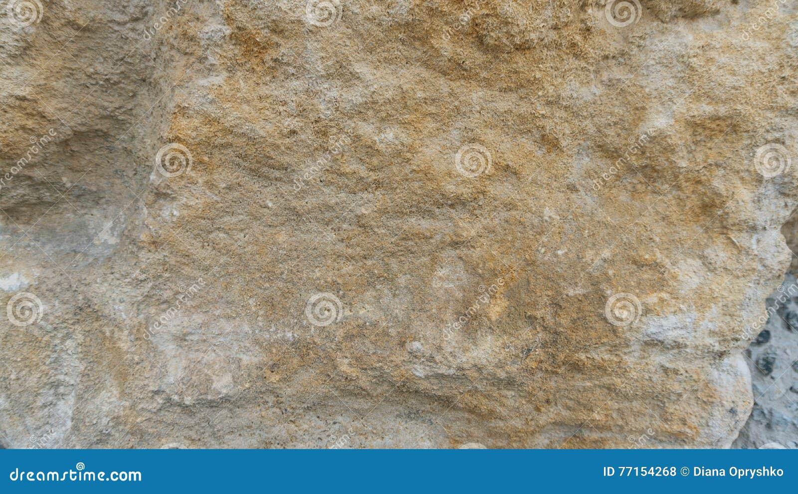 Texture de pierre de chaux de Pinczow Debnik