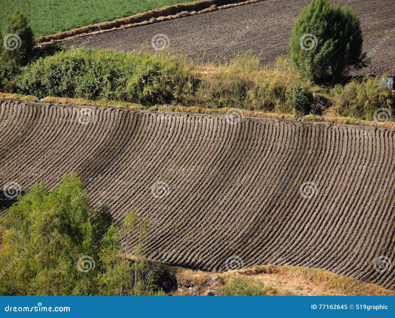 Texture de terres cultivables