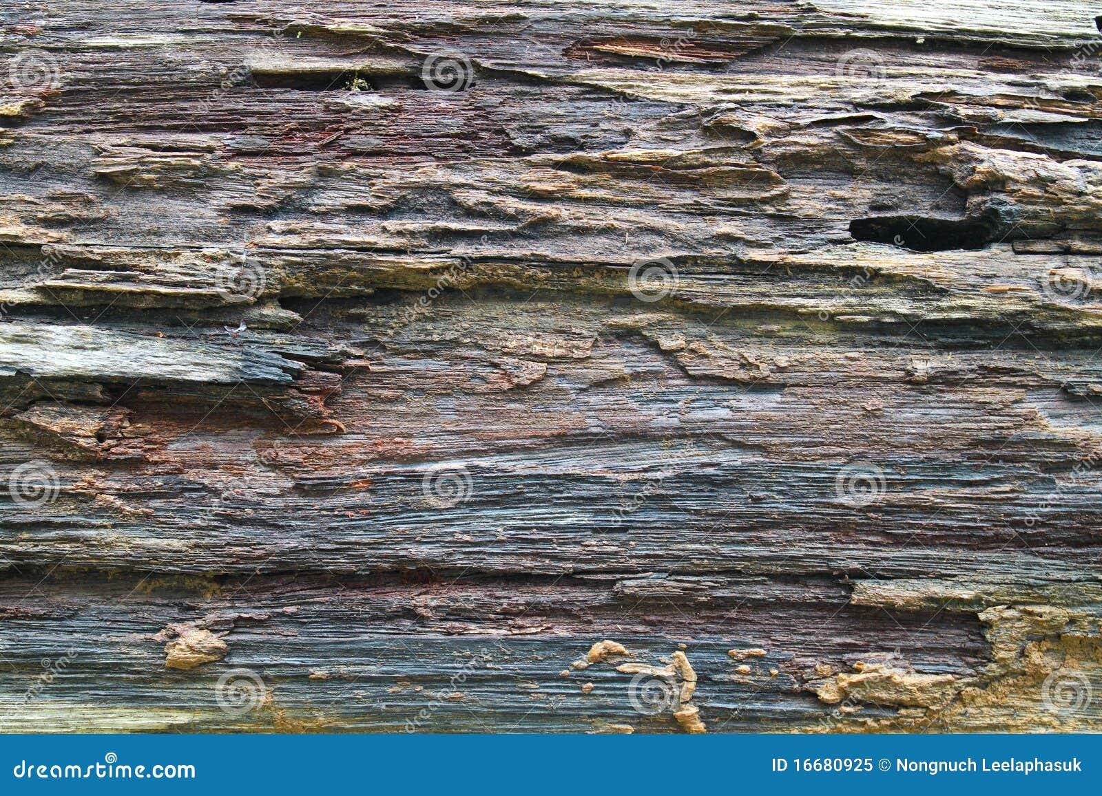 Texture De Vieux Bois Rugueux Sur Le Panneau Photo libre de droits  ~ Sur Les Bois Annecy Le Vieux