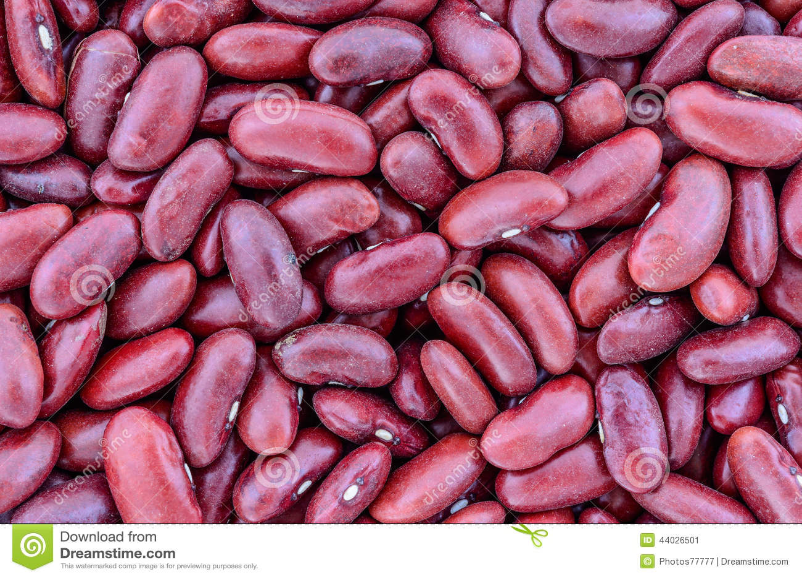 Texture des haricots nains rouges
