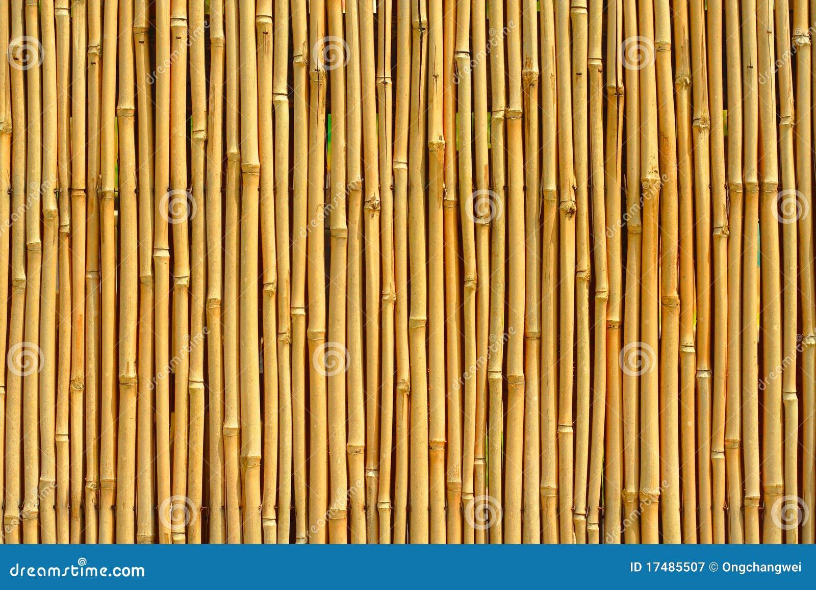 Texture En Bambou Image Stock Image Du Arbre Ext 233 Rieur