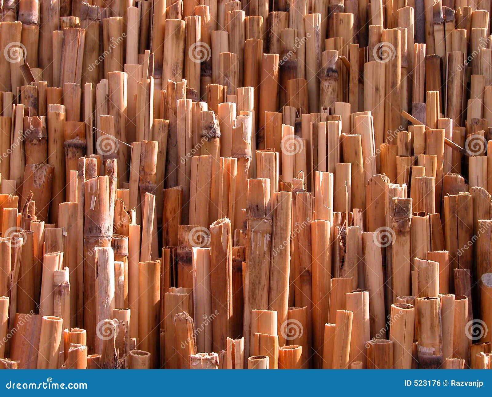 Texture en bambou
