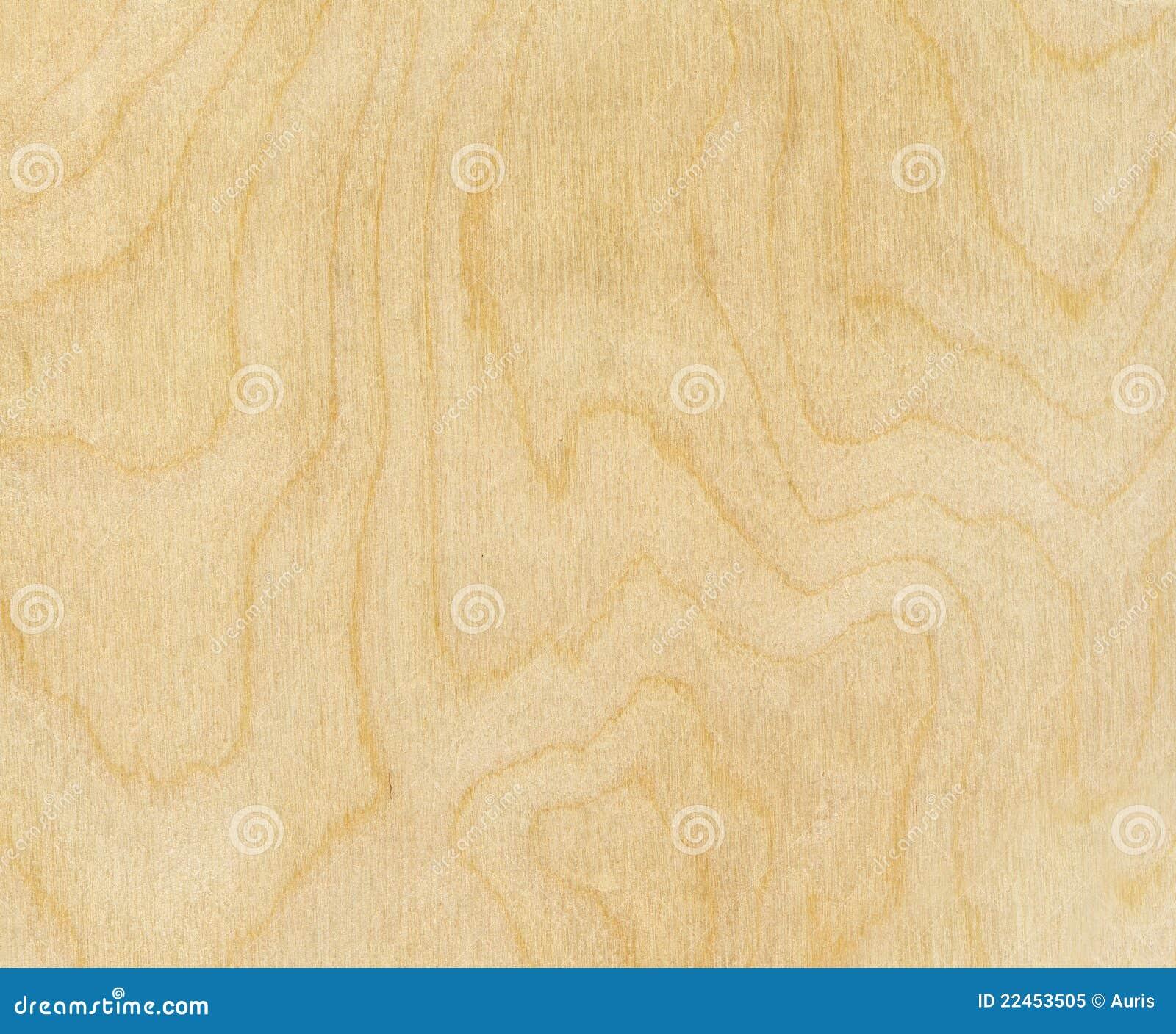 Texture en bois de bouleau image stock Image du fond 22453505 # Bois De Bouleau Utilisation