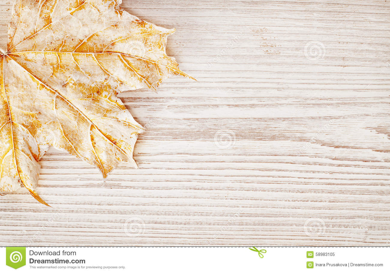 Texture en bois de fond et feuille, Autumn White Wooden Board