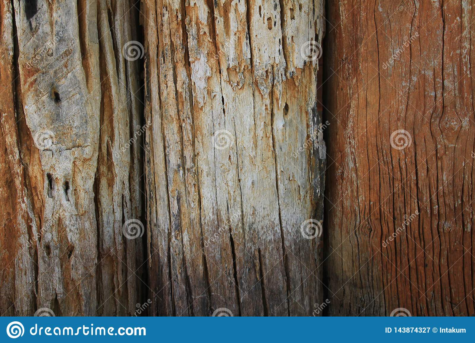Texture en bois Du vieux bois de rondin par partie du tronc ou une grande branche d un arbre ont été rayés pour faire le mur