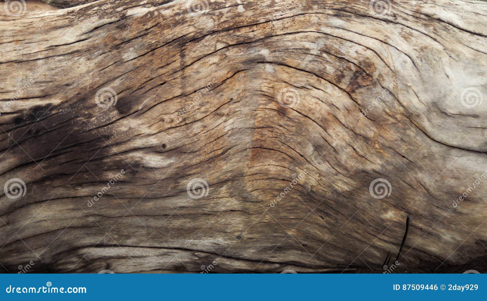 Texture en bois naturelle