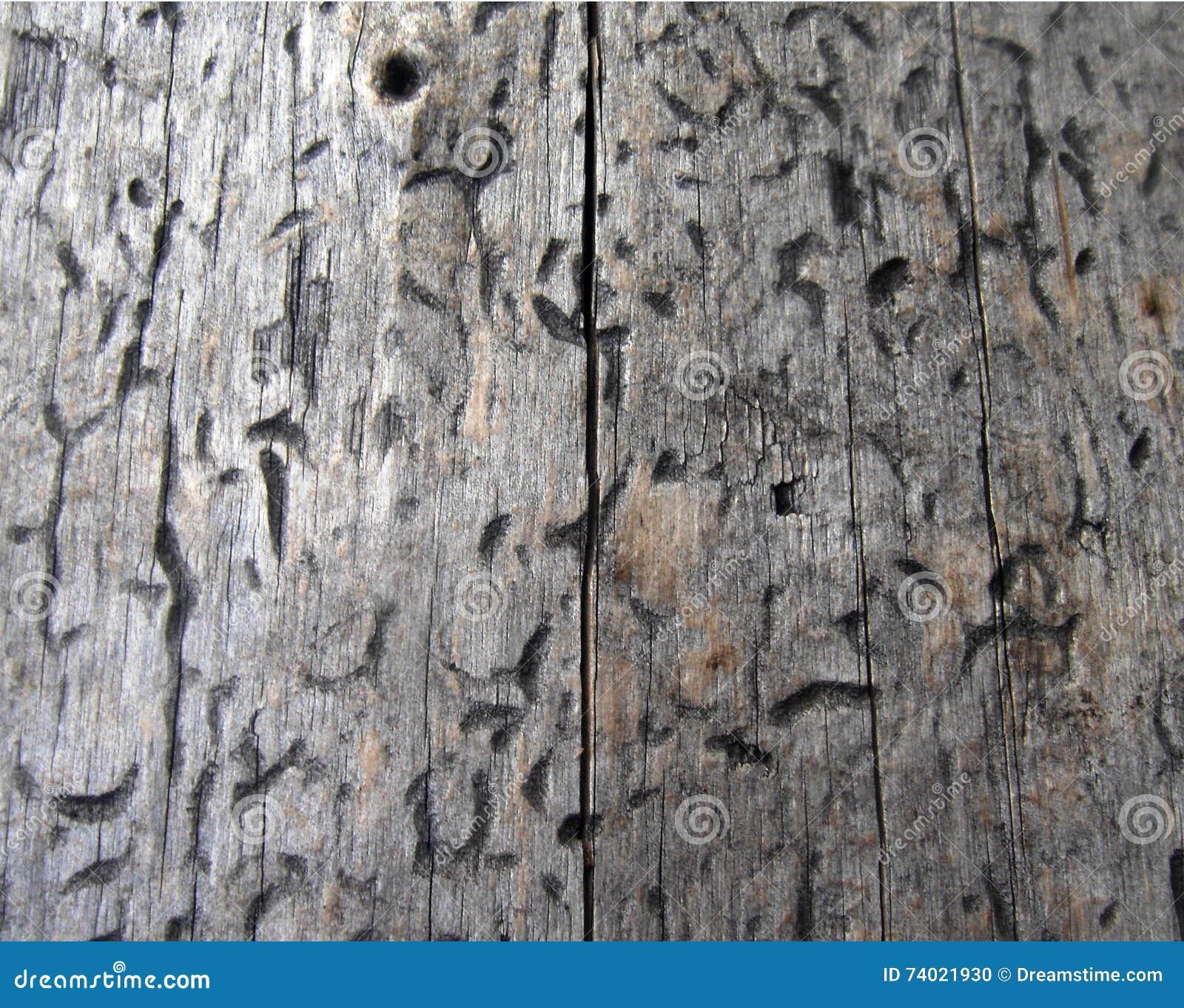 Texture en bois, texture de bois de construction, fond de nature