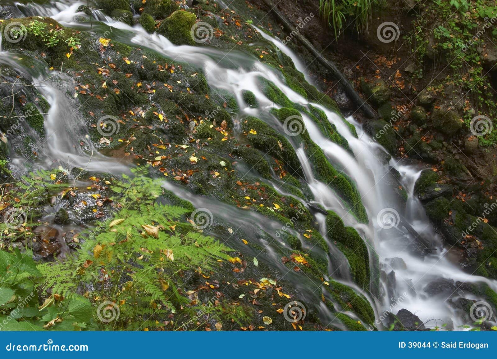 Texture Falls