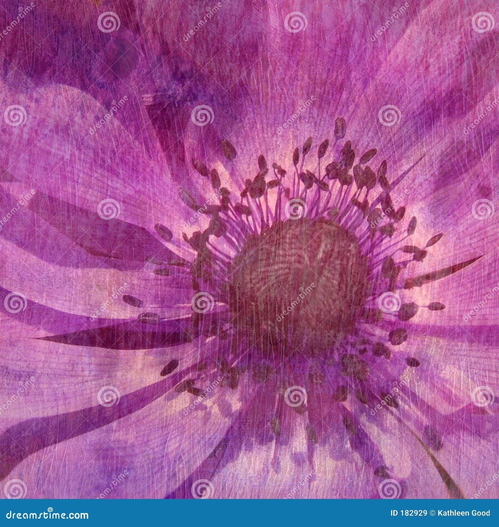 Texture florale - lilas