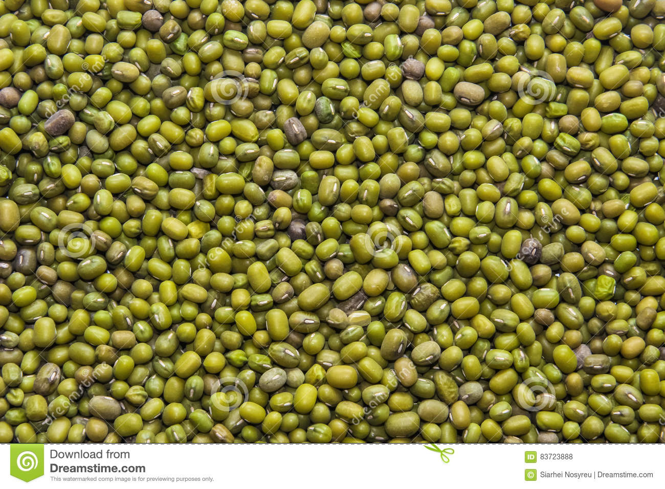 Texture Of Many Seeds Mung Bean, Background. Stock Photo