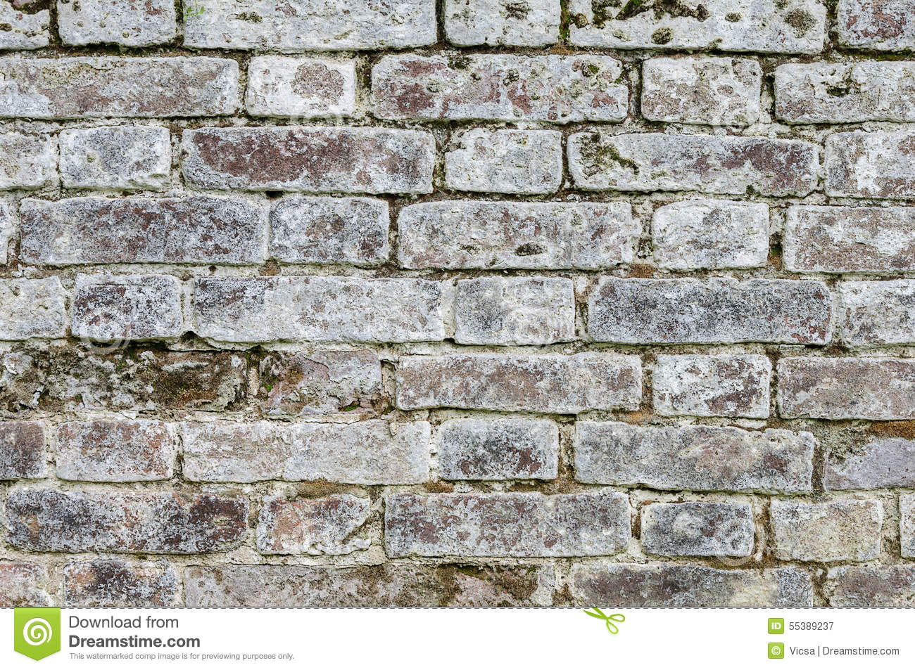 Texture Old Mossy Gray Brick Wall Stock Photo Image 55389237