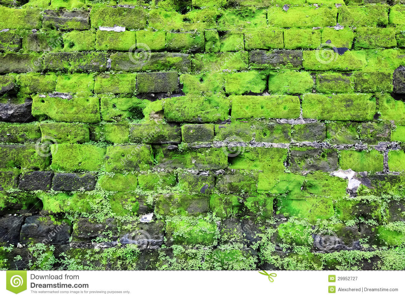 Moss Building And Design Careers