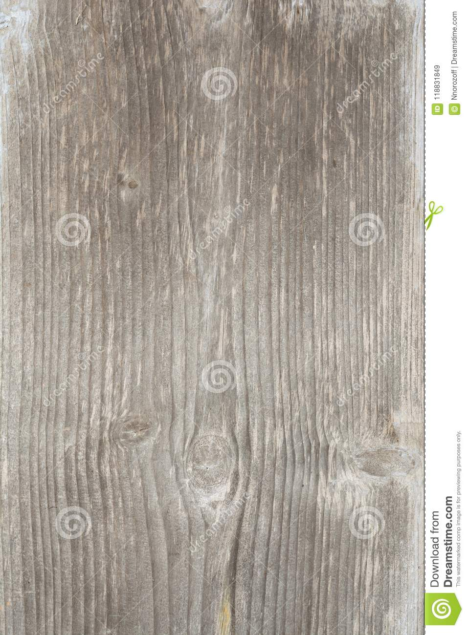 Texture of the old tree with longitudinal cracks, surface of ancient weathered wood, abstract background