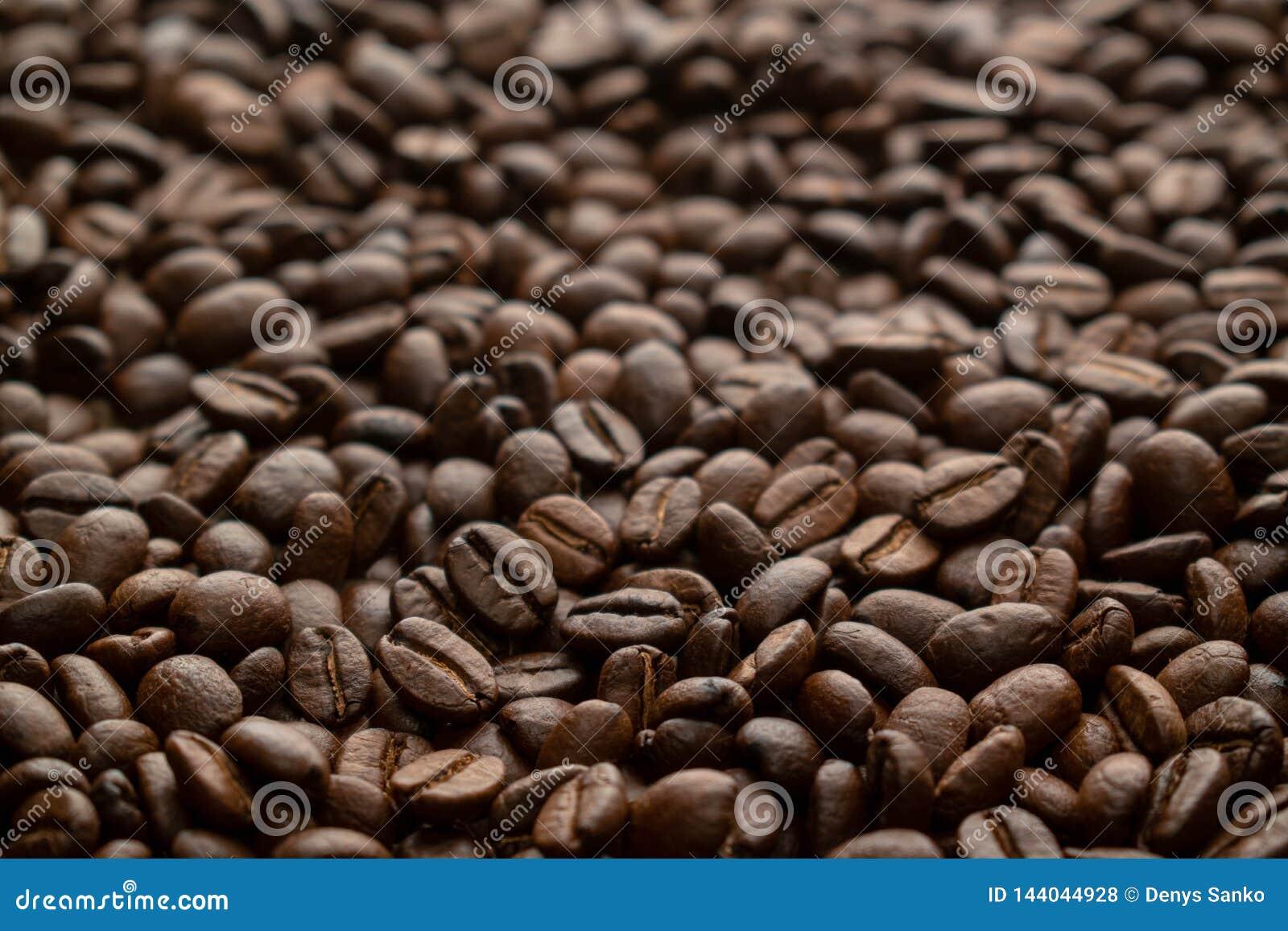 Texture pure de grains de café d arabica