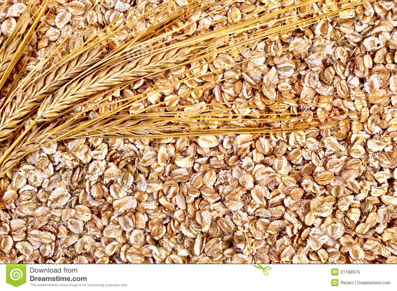 The texture of rye flakes with stalks of rye