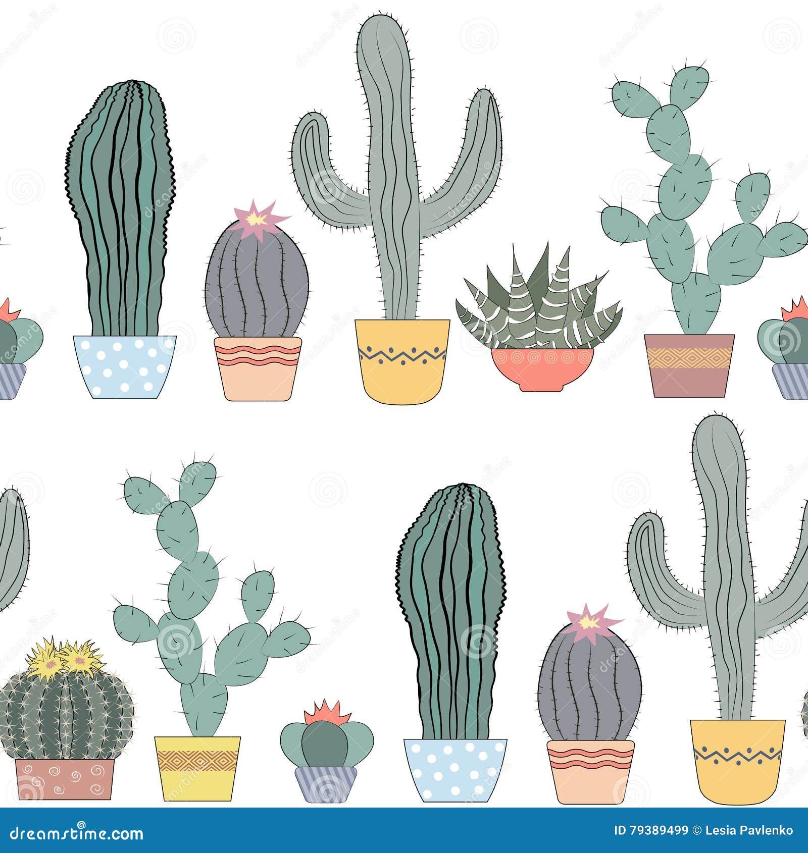 Texture sans couture de cactus succulents fleurs à la maison plantes d intérieur dans des pots