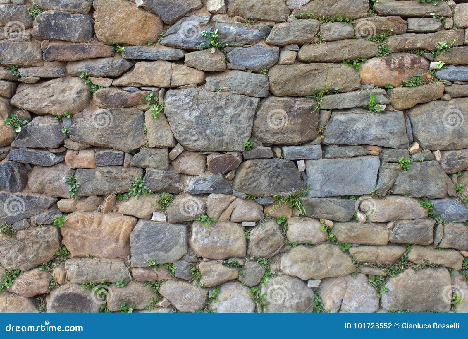 Download Texture stones stock photo. Image of autumn, frond, fantasy - 101728552