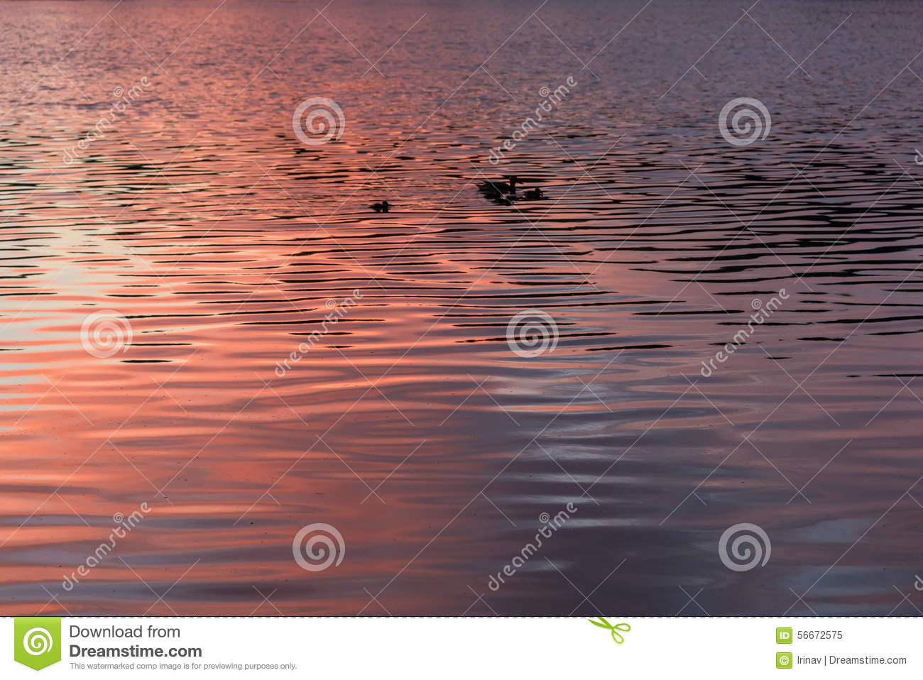 Texture water sunset background