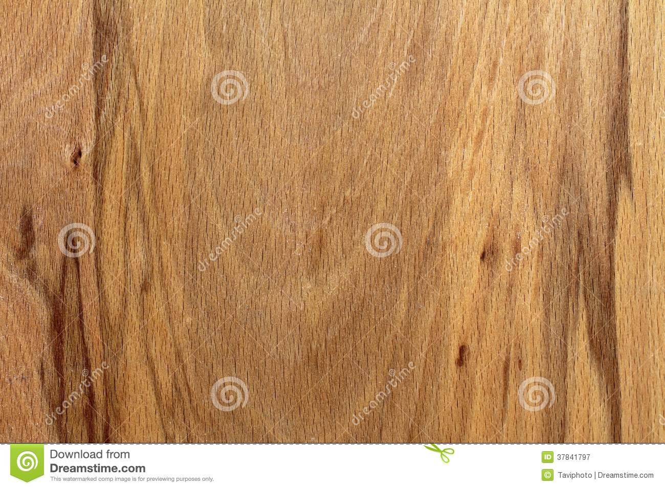 Textured Wood Veneer With Veins Royalty Free Stock Photography - Image ...