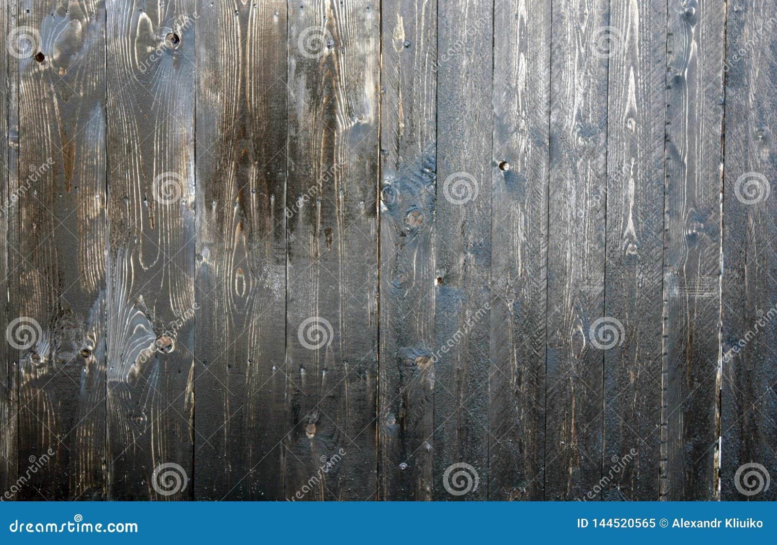 Texturera eller bakgrund Trä texturerar boaen E wax mastic r